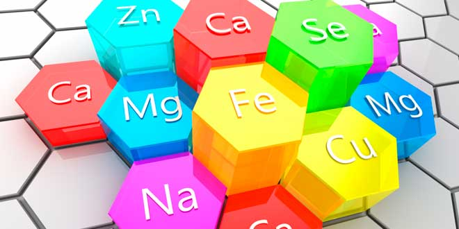 I minerali per l'organismo