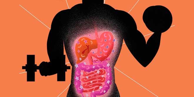 Flora intestinale negli atleti